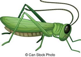 Top grasshopper clip art free clipart spot