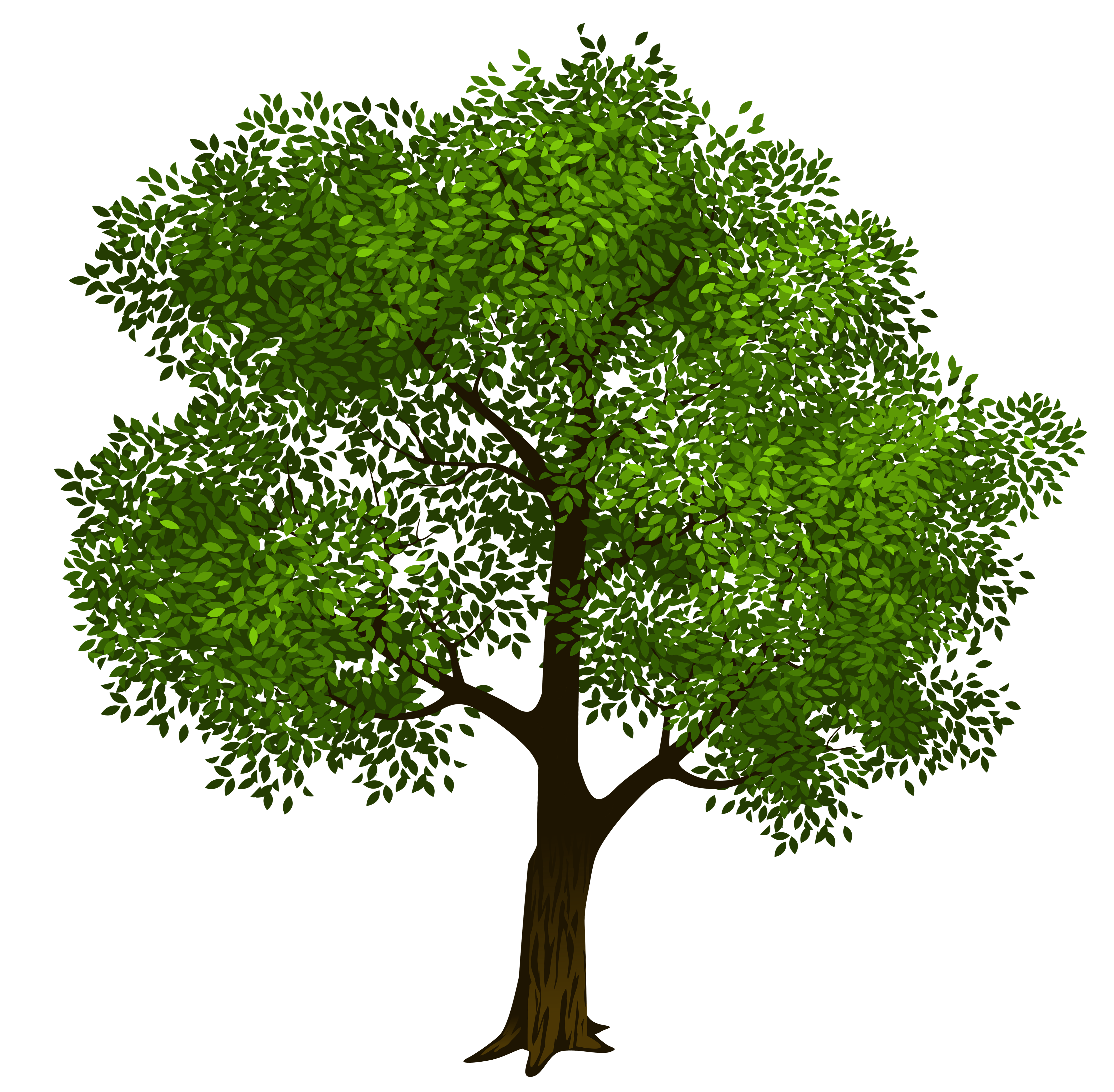 Tree clipart clip art image library