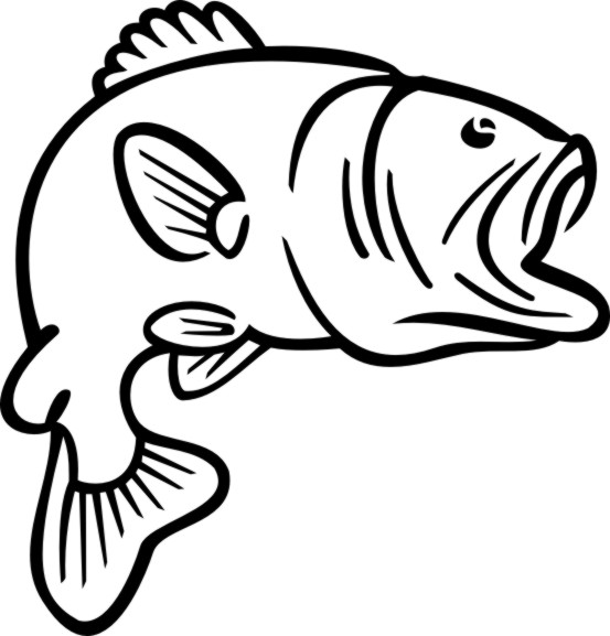 Bass fish clip art