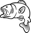 Bass fish jumping coloring page bass fish clipart