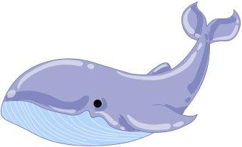 Blue whale clip art free clipart images 2