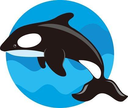 Blue whale clipart clipartandscrap