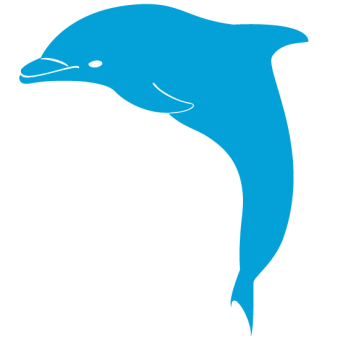 Bottlenose dolphin clipart vector china cps