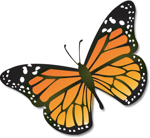 Butterflies butterfly clip art clipart