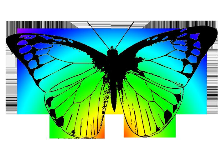 Butterflies butterfly clipart 3