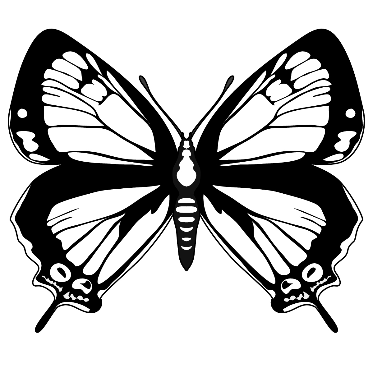 Butterfly black and white butterfly clip art