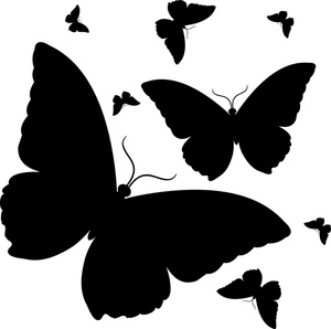 Butterfly black and white butterfly clipart clipart