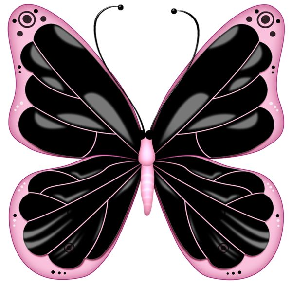 Butterfly butterflies clip art images on drawings diy 4