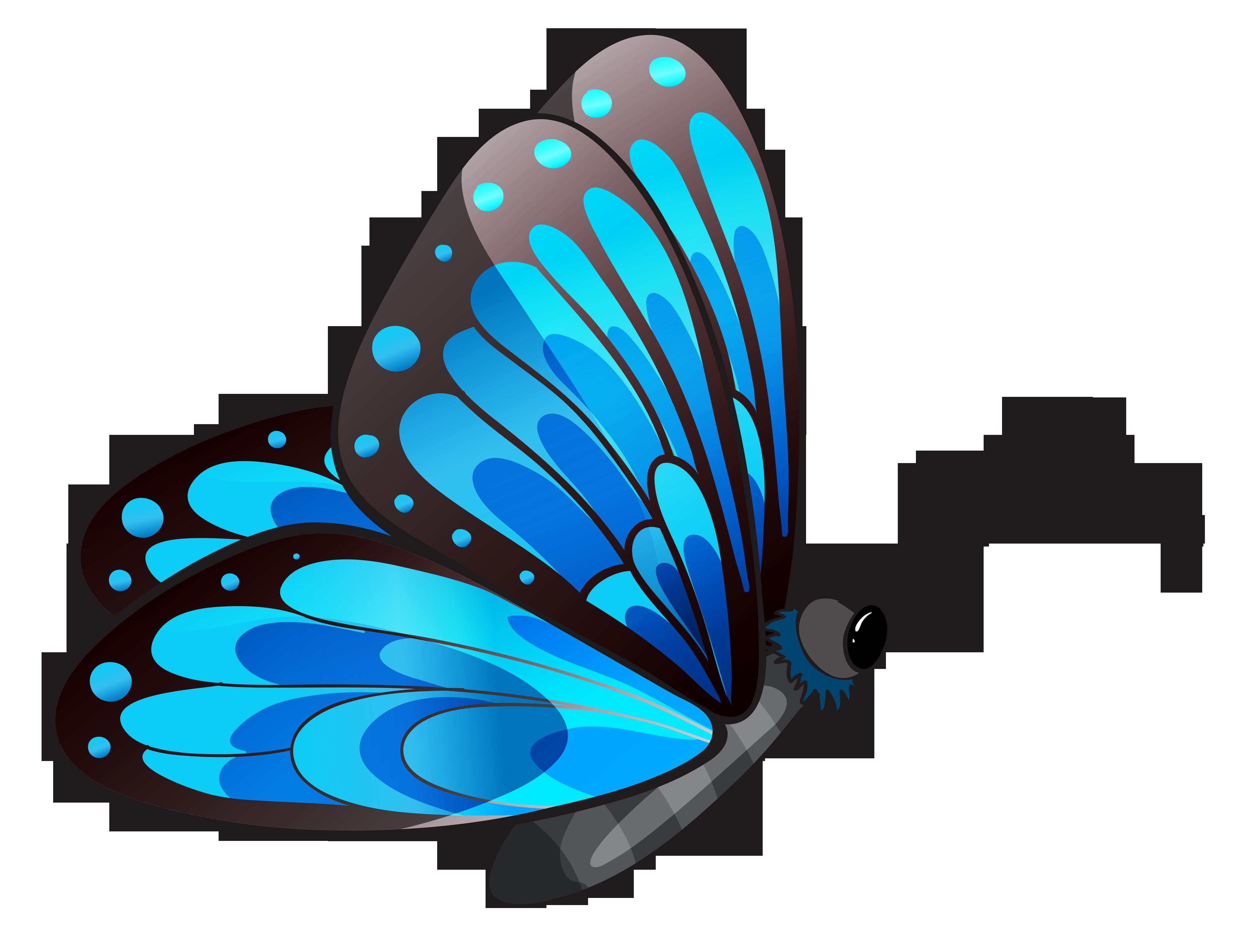 Butterfly clip art 2