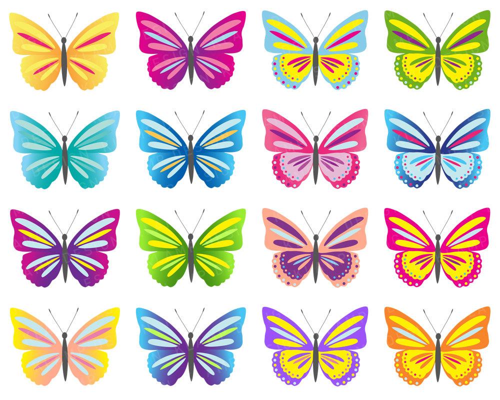 Butterfly clip art digital butterflies clipart colorful