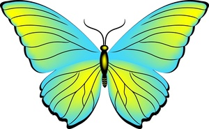 Butterfly clipart image blue free images