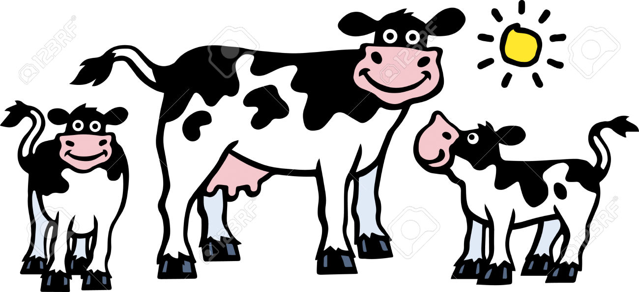 Calf cow clipart explore pictures