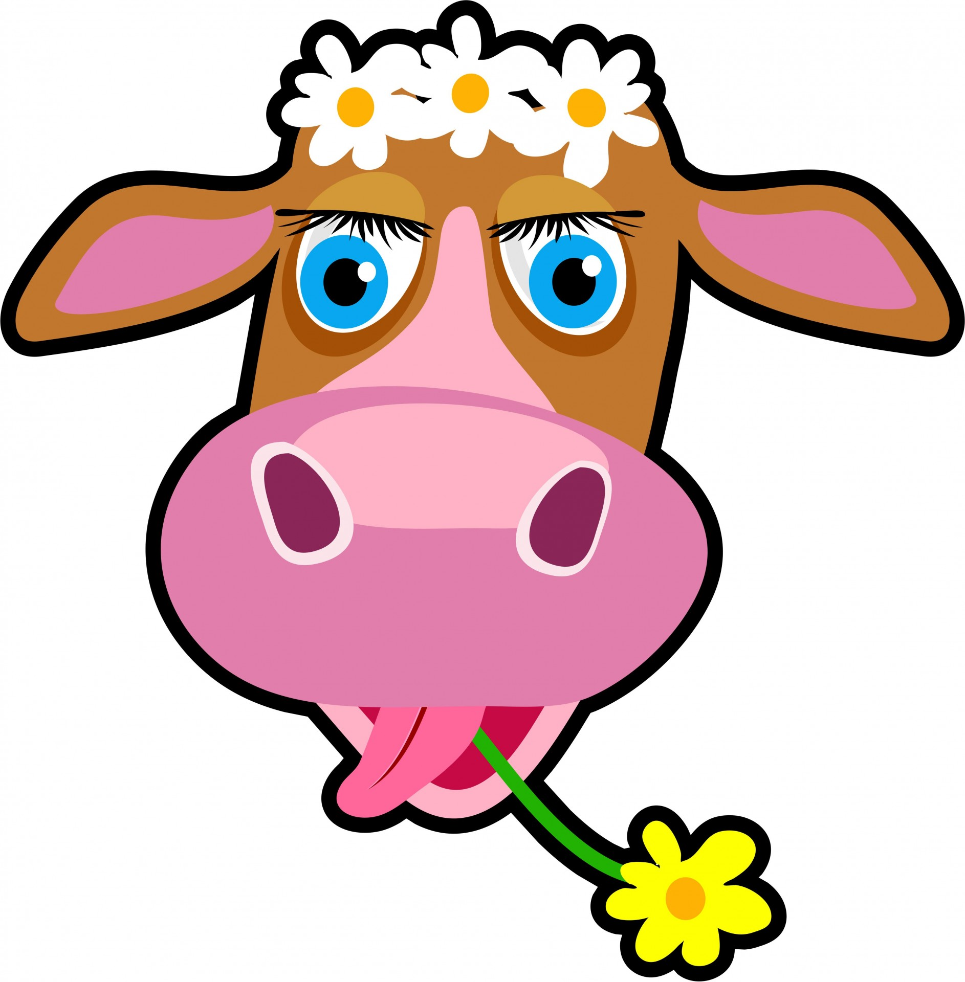 Cartoon cow clipart free pictures