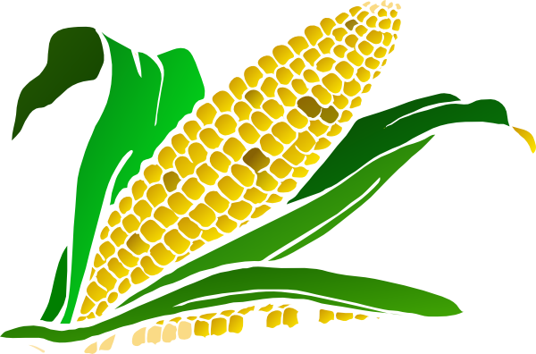 Corn clip art clipartpost