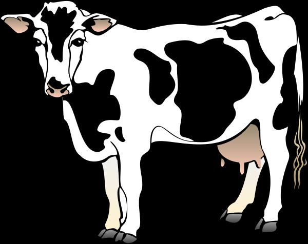 Cow clip art free cartoon clipart images 2