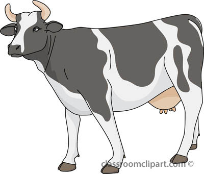 Cow clipart cliparts for you 2