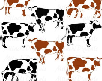 Cow clipart herd cattle pencil and in color cow