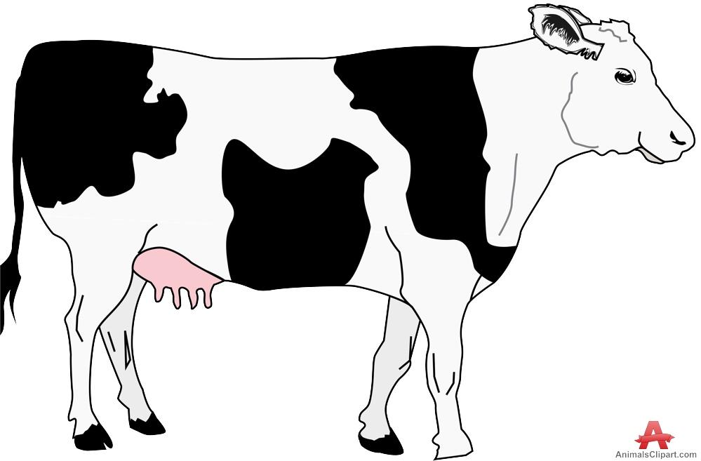 Cow with black spots clipart free design clipartandscrap