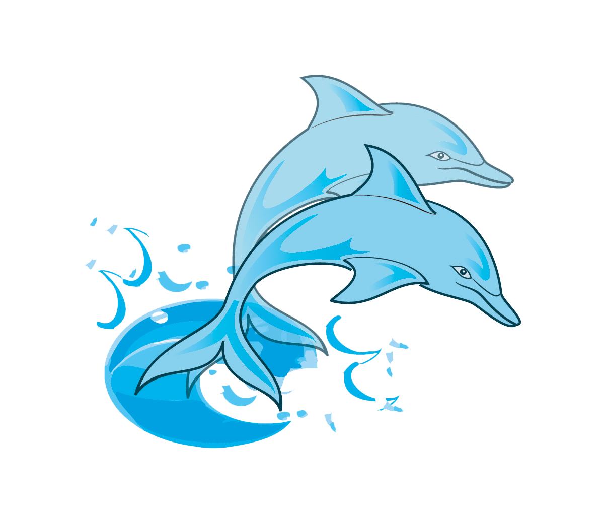 Cute baby dolphin clipart free images