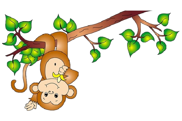 Cute baby monkey clipart free images