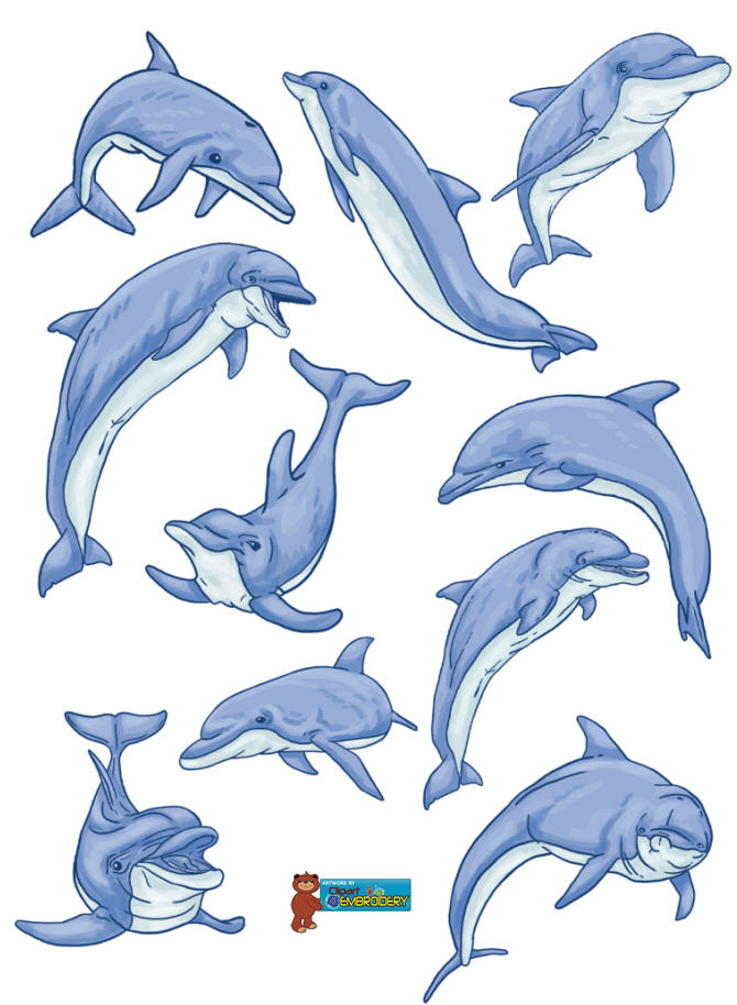 Dolphin clipart dolphin clipart fans