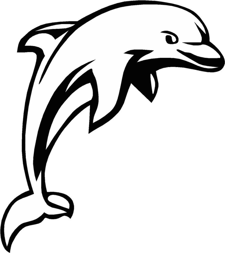Dolphin cliparts vector zone