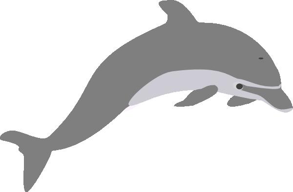 Dolphin outline grey clip art at vector clip art