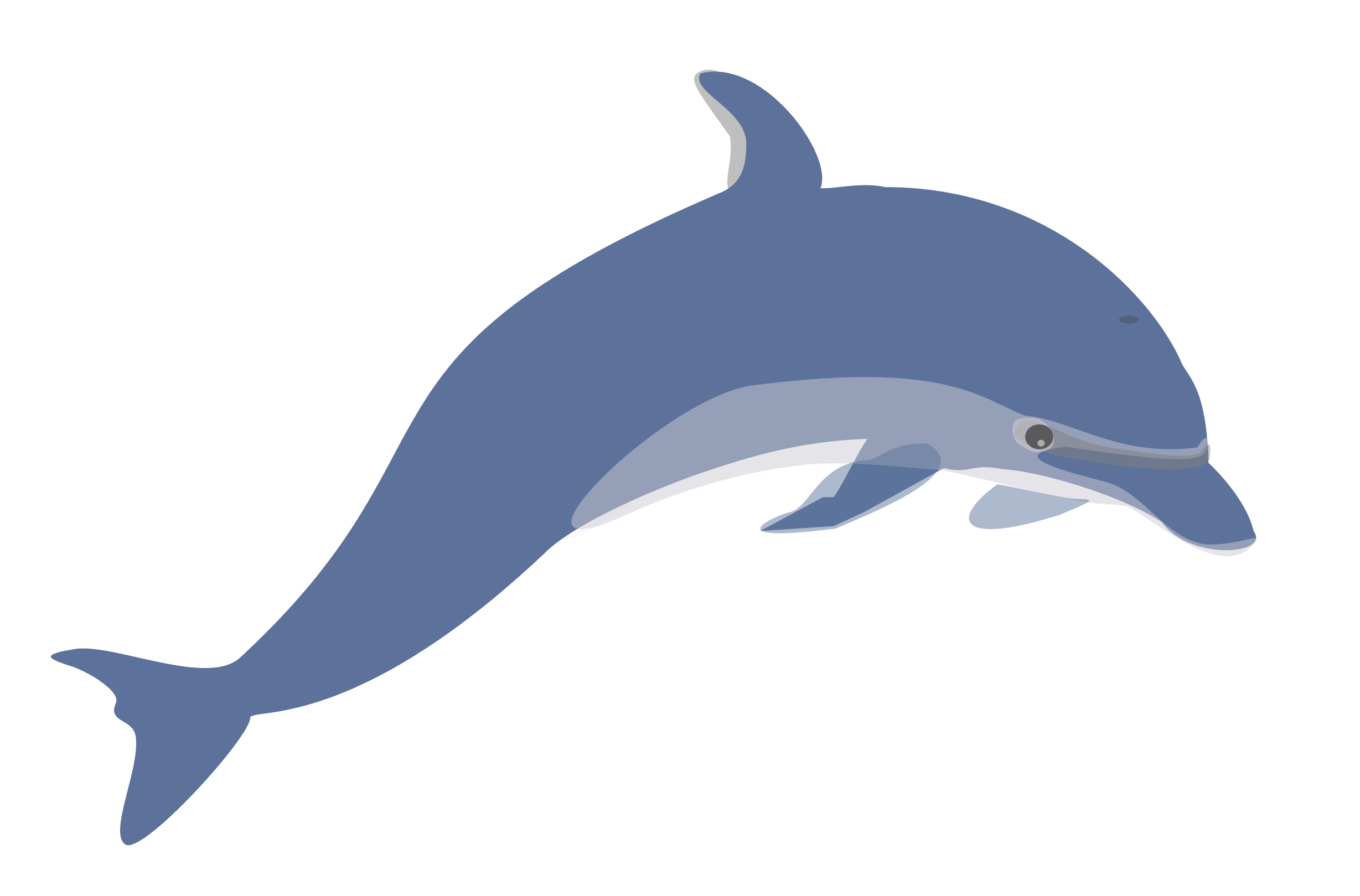 Free dolphin clipart full page background clipart collection