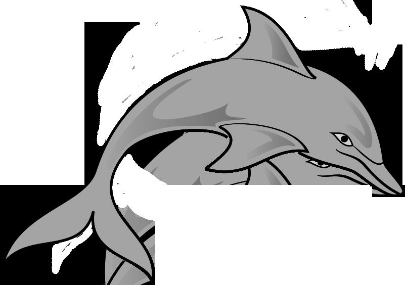 Free dolphin clipart image clipartandscrap