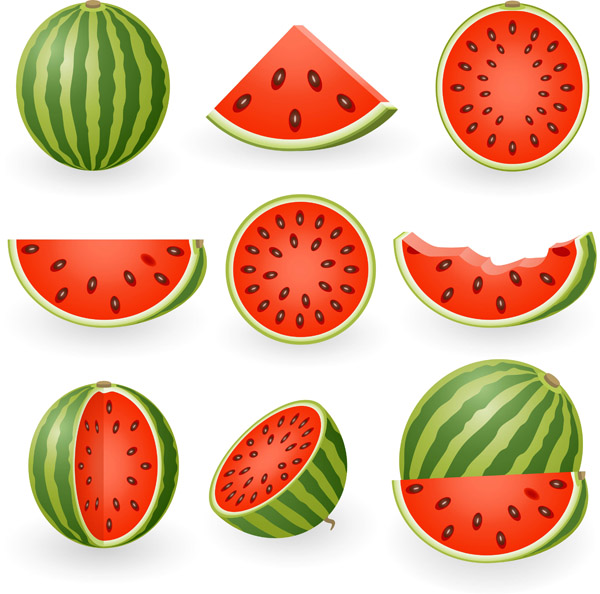 Free vector watermelon clip art bulletin board