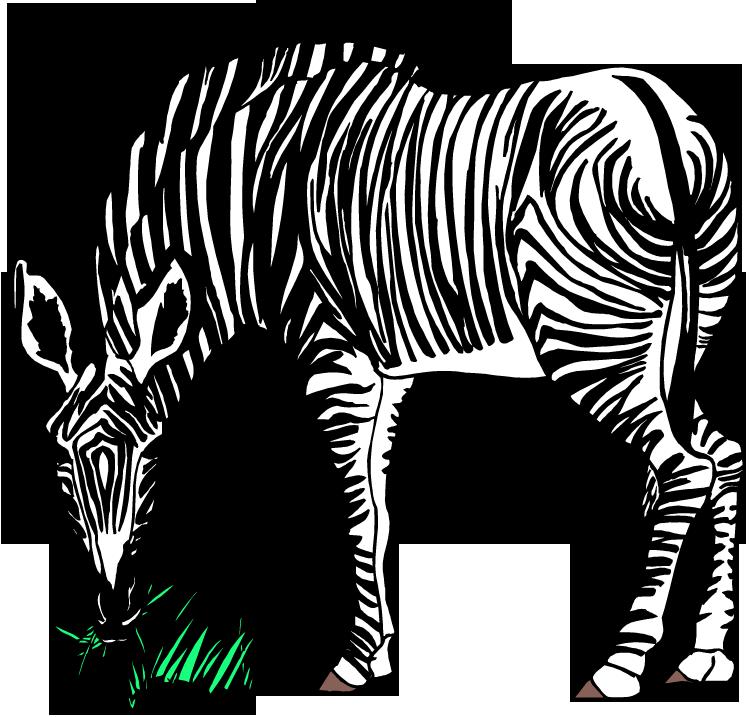 Free zebra clipart 2 clipartandscrap