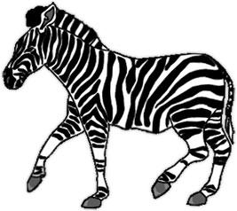 Free zebra clipart graphics