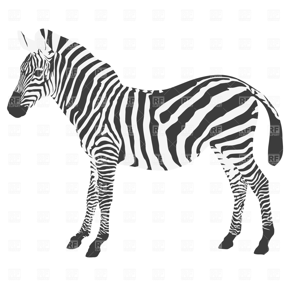 Free zebra clipart the cliparts