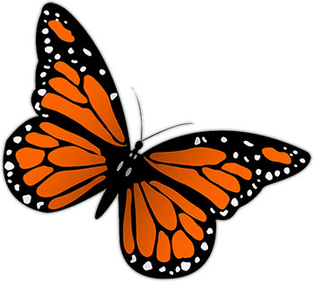 Monarch butterfly clip art clipartandscrap
