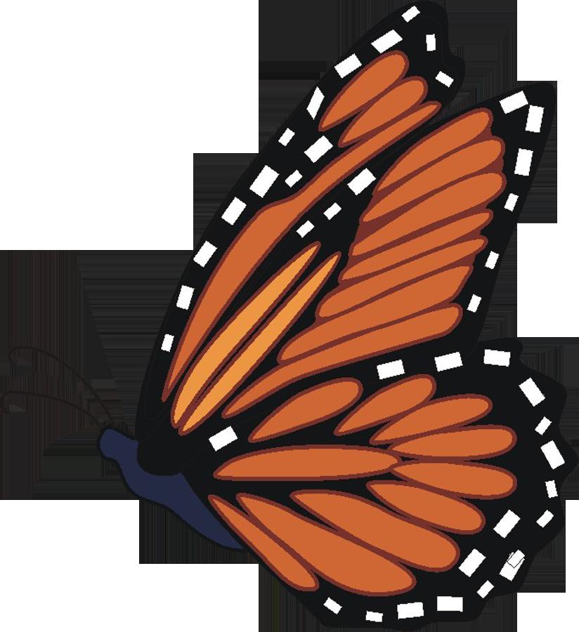Monarch butterfly monarch 4 clipartbarn