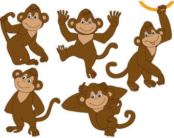Monkey clipart studio