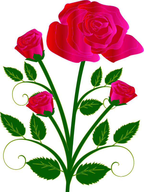 Single pink rose clip art free clipart images