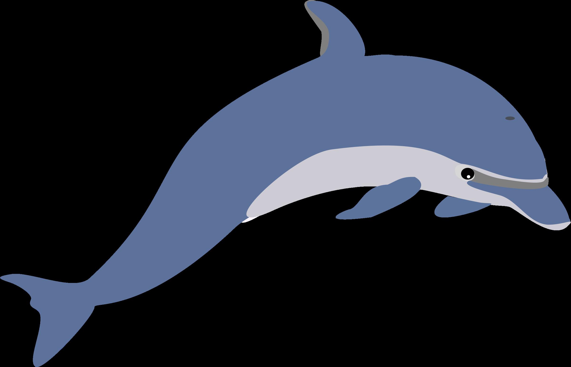 Top dolphin clip art free clipart spot