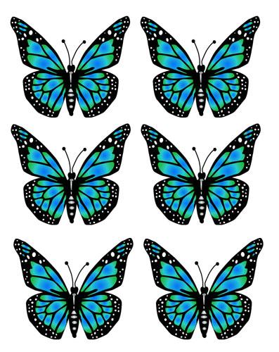 Transparent butterflies clip art butterfly image clip art free