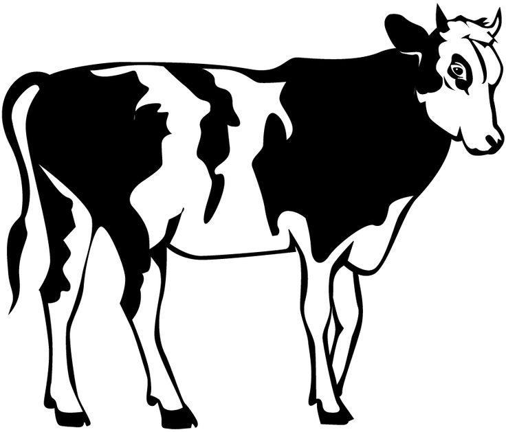 Unique cow clipart ideas on zoo cute 2