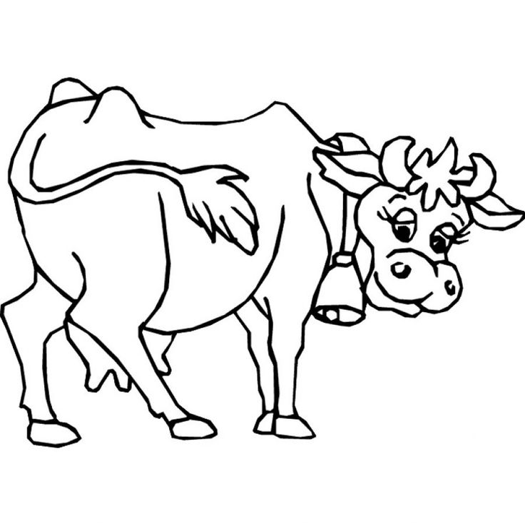 Unique cow clipart ideas on zoo cute 7