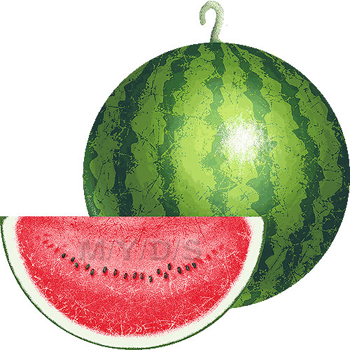 Watermelon clipart free clip art