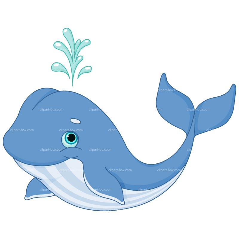 Whale clipart cute baby dolphin pencil and in color whale