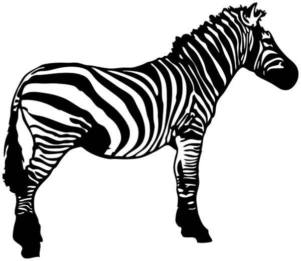 Zebra clipart free clipground