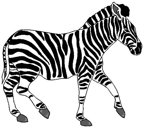 Zebra clipart free images 2