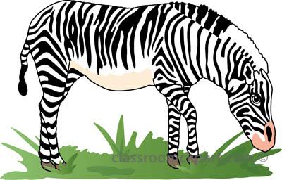 Zebra clipart zebra 2a clipart