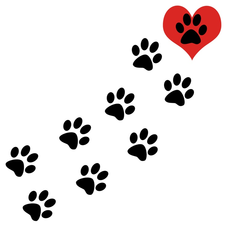 Dog paw print dog print clip art paw prints brown clipart