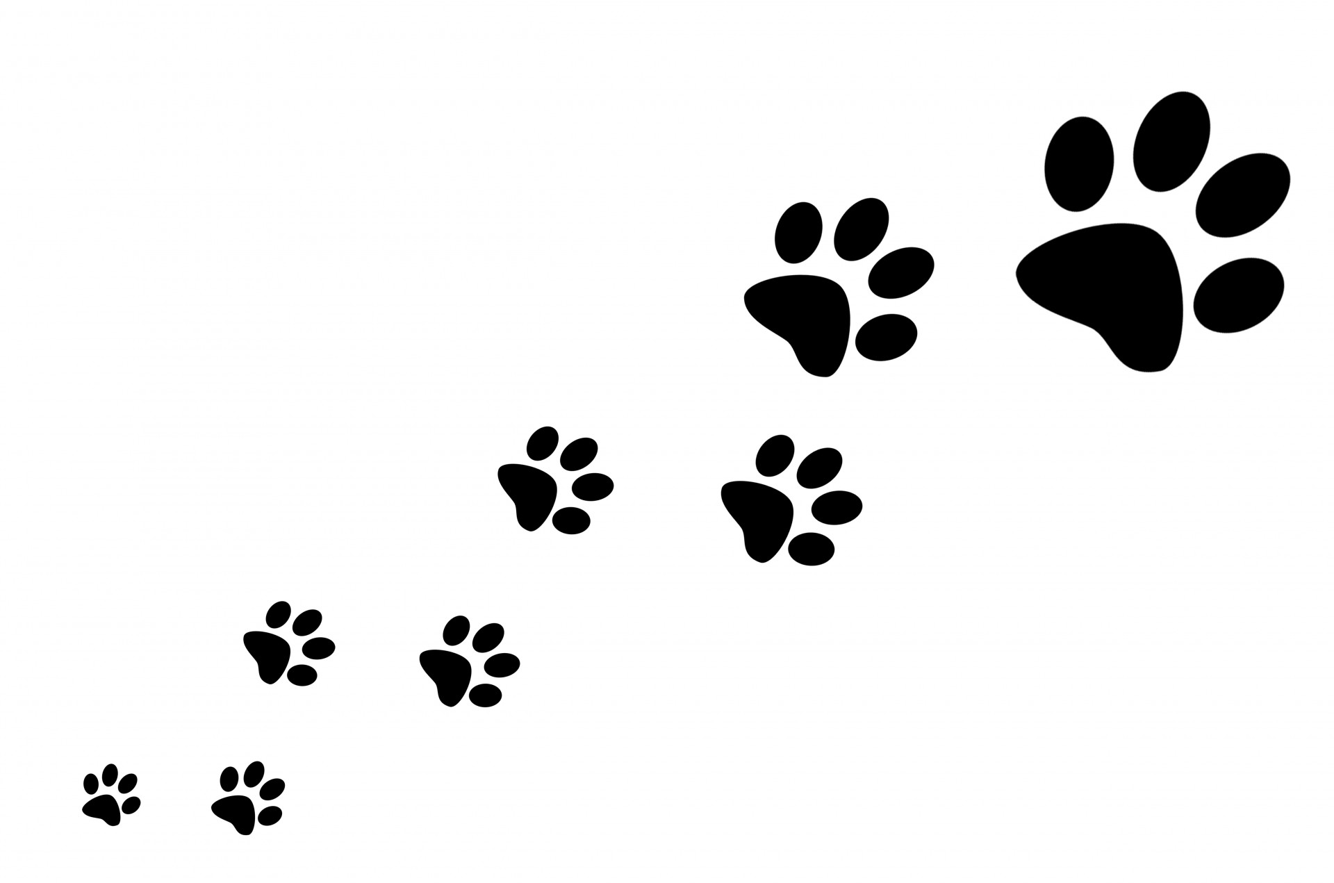 Dog paw print free printable paw print clipart clipground