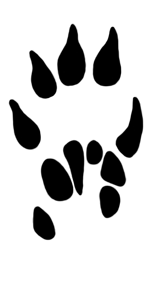 Dog paw print paw prints clipart 3