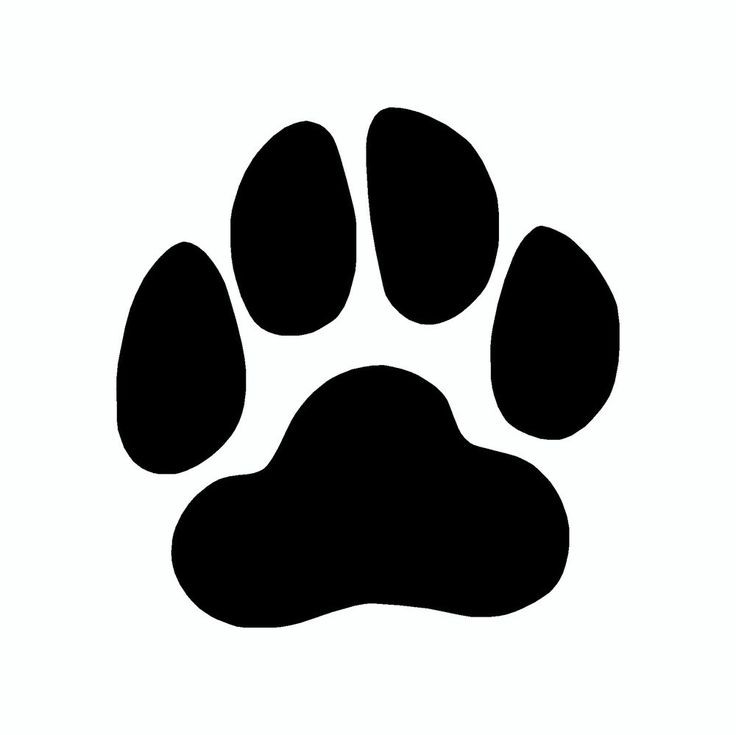 Picture of dog paw prints free clip arts sanyangfrp